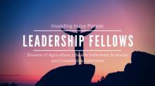 Leadership Fellows Banner 2019