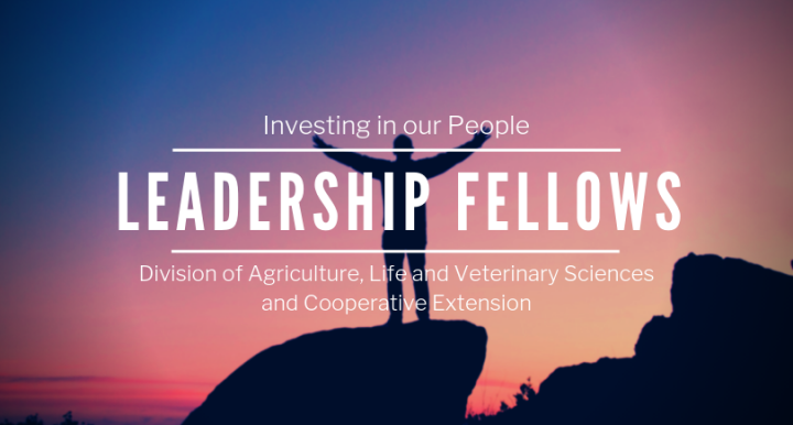 Leadership Fellows Banner 2019