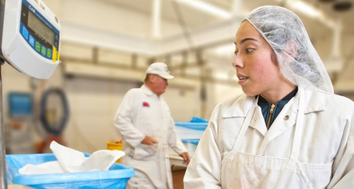 An individual in safety gear working in a a meat processing lab.